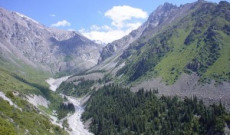 Turkey's Experiences on Management of Mountain Forests