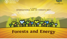 21 March 2017-International Day of Forests