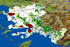 Distribution of Areas infested with Marchalina hellenica in Aegean Region