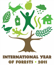 international-year-of-forests