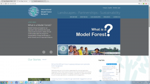 what is a model forest